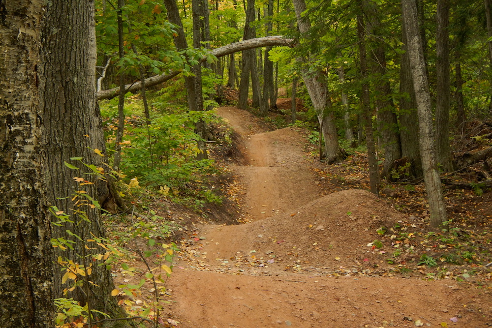 Rollers in the new MTB flow trail at the Michigan Tech Trails