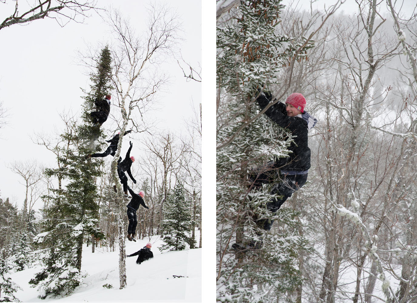 Climbing trees and then jumping out of them